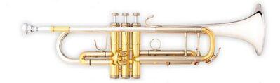 B & S Challenger II Profiklasse - Trompete 3137/2 ST mit massiv Sterlingsilberbecher - Hagenburg
