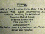 """Spannender Roman """"Der Graf von Monte Christo"""" von Alexandre Dumas in sehr gutem Zustand, Schneider Verlag, ISBN: 3505090115, 4,- € - Unterleinleiter"""