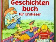 Das dicke Geschichtenbuch für Erstleser - Münster