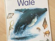 Mein erstes Frage- und Antwortbuch, Wale - Kindersachbuch - Bremen