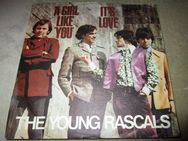 "The Young Rascals - A Girl Like You (1967) Atlantic 7"" Single (VG+/ NM) - Groß Gerau"