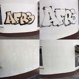 Graffitientfernung, Farbreparatur und Graffitischutz