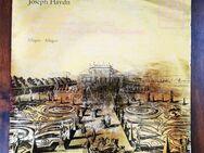 Joseph Haydn Concerto D-dur per il Corno di caccia Schallplatte - Trendelburg Zentrum