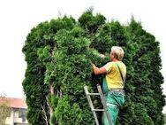 Vorarbeiter für Landschafts - und Gartenbau ( m/w/d/  ) ab sofort gesucht ! - Osterhofen