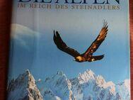 Die Alpen - im Reich des Steinadlers - Bad Belzig Zentrum