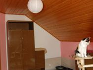 Tierpension MOPPI`s DOGhome - Arnschwang