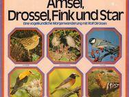 12'' LP - Amsel, Drossel, Fink und Star - Eine vogelkundliche Morgenwanderung - Zeuthen