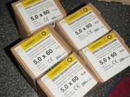 Spanplattenschrauben 5 x 60 mm,Torx - Ulmen