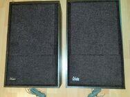 Vintage Audion Box Rubin 208 Lautsprecher 100 Watt 8 Ohm - Verden (Aller)