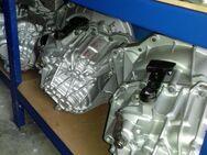 PF6010 Getriebe Renault Trafic  2,0 Liter - Bottrop