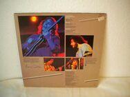 Larry Carlton-Mr. 335 Live in Japan-Vinyl-LP,WB,1979,Jazz/Rock - Linnich