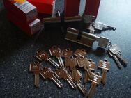 BKS-Schliesszylinder mit Mehrschlüssel - Ulmen
