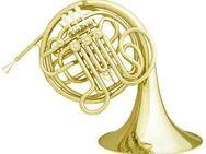 Meister Hans Hoyer 7802 Profiklasse - Doppelhorn. Ausstellungsinstrument - Hagenburg