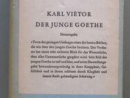 Karl Vietor: Der junge Goethe. - Münster