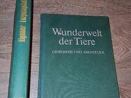 1977 Enzyklopädie der Tiere Band1 + 1976 Wunderwelt der Tiere