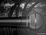 Verleih Angebot Kabelmikrofone von Shure (SM58)