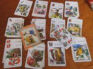 DDR Lehrquartett Hier bin ich zu Hause / Altenburger Spielkartenfabrik 1974 - Zeuthen