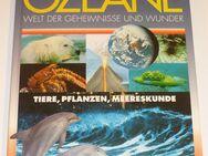 Sachbuch Ozeane Welt der Geheimnisse und Wunder - Lorsch (Karolingerstadt)