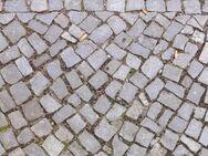 historische Pflastersteine Grauwacke Mosaikpflaster Terrasse Garten Natursteine Hofpflaster Alstadt - Halle (Saale)