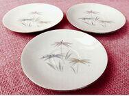 3 kleine Unterteller für Tassen - Mit Blumenmotiv - Porzellan Winterling Marktleuthen - Groß Gerau