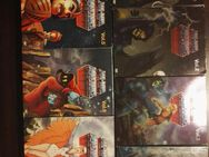 DVD He-Man and the Masters of the Universe Vol. 1-7 - Leck