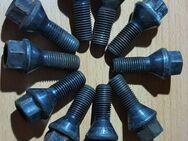 10 x Stück M12 x1,5 Kegelbund 60° SW17 Radbolzen schwarz verzinkt - Verden (Aller)