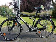 Reise- / Trekkingrad mit top Ausstattung von RED BULL abzugeben - Wilnsdorf