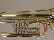 V. F. Cervený Konzert - Flügelhorn, CVFH502R-C200 Limitiertes Jubiläumsmodell, NEUWARE