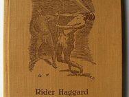 Henry Rider Haggard, Der Zauberer im Sululande (Zululande) Fehsenfeld - Königsbach-Stein