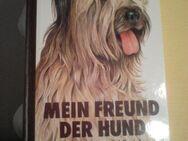 Mein Freund der Hund - Chemnitz