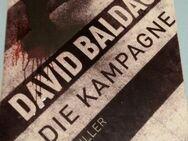 David Balducci: Die Kampagne - Hamburg