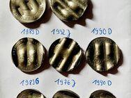 amtlich entwertete Münzen / Schreddergeld: 2 x 5, - DM 3 x 2, - DM 3 x 1, - DM - Mannheim