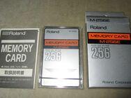 Roland M-256E MEMORY CARD (Vintage - New!) - Groß Gerau