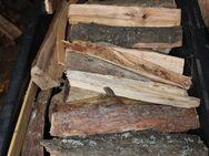 Brennholz / Ofenholz 20-25cm Länge gemischt, trocken pro 65dm³ - Bad Belzig Zentrum