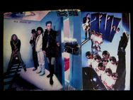 Cheap Trick - All Shook Up (LP) - Niddatal Zentrum