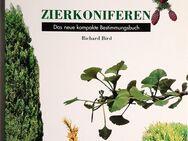 Richard Bird - Zierkoniferen - Das neue kompakte Bestimmungsbuch - Nürnberg