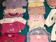 Baby Kleidung Größe 62 - Königsbach-Stein