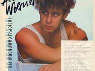 Schallplatte Vinyl 12'' LP - Alan Woerner - … bis irgendwas passiert - CBS - Zeuthen