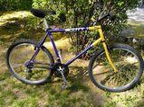 "Großes Vintage MTB Scott Sawtooth, Mountainbike, RH 21"""