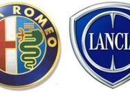 ✅  Alfa Romeo - Lancia - Fiat OBD Service - Auslesen - Reset - Löschen ✅ - Essen