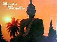 Spirit of Buddha -  Kalender mit wunderschönen Motiven zum Einrahmen - Niederfischbach