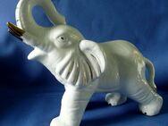 eindrucksvoll gearbeitete Elefantenfigur - jetzt im Preis reduziert! - Niederfischbach