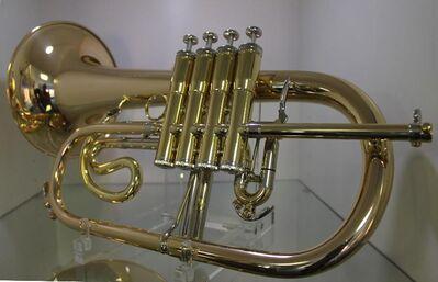 Antoine Courtois Sergei Nakariakov Profiklasse - Flügelhorn, Mod. 156 NR mit 4 Ventilen - Hagenburg