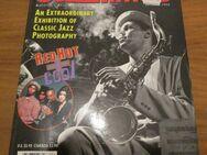 JAZZ TIMES - America's Jazz Magazine (1994) - Groß Gerau