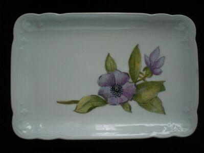 Seltmann Weiden Julia Platte weiß Porzellan-Malerei Blumen 4,- - Flensburg