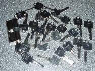 BKS-Profilzylinder mit 25 Schlüssel - Ulmen