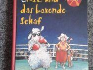 Eric und das boxende Schaf - Kassel Brasselsberg