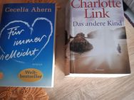 Cecilia Ahern-Für immer vielleicht und Charlotte Link-Das andere Kind - Euskirchen