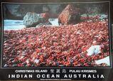 Sechs Poster von der Weihnachtsinsel im Indischen Ozean