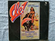 OLE SUPER DISCO TUBE / DISCO FLAMENCO - LP - Ilsede